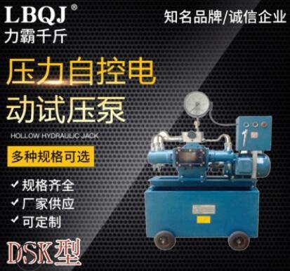 生产压力自控电动试压泵DSK 电动试压机
