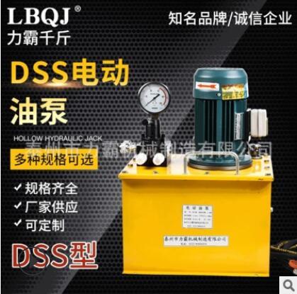 供应DSS电动液压泵液压油泵 单双作用千斤顶超高压油泵